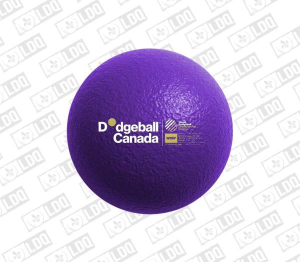 Ballon Dodgeball Ballon-chasseur